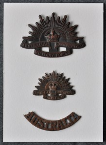 World War II badges after conservation mounting